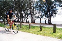 Bike Riding Florida
